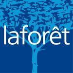 LAFORET Immobilier - RENAISSANCE IMMOBILIER